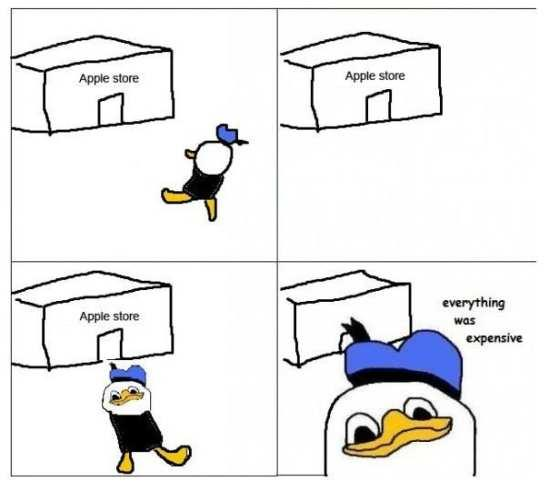 Dolan and the apple store
