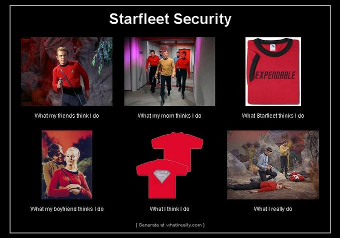 Star Trek Security
