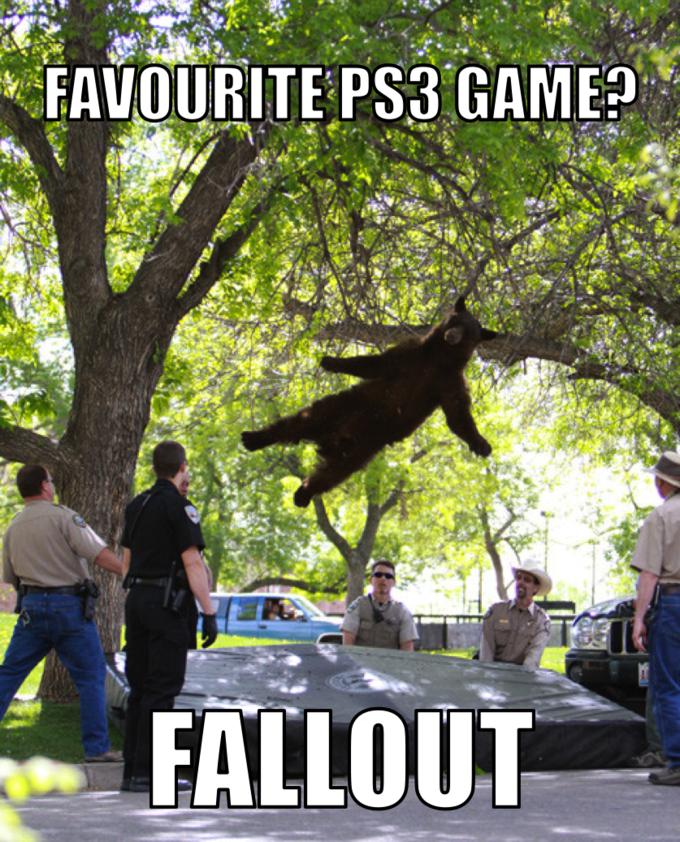 Bear fallout