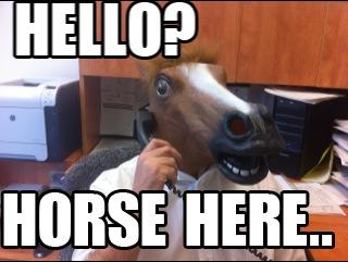 Horse Here...