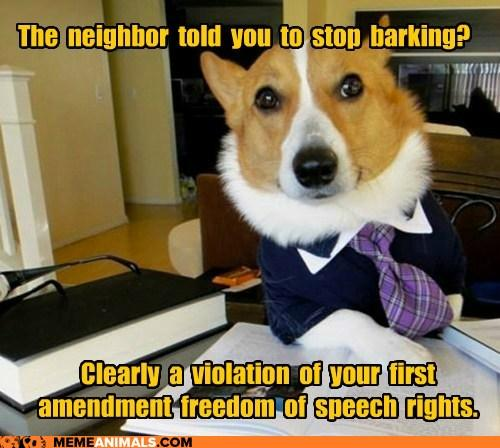 Lawyer Dog - Freedom of Speach