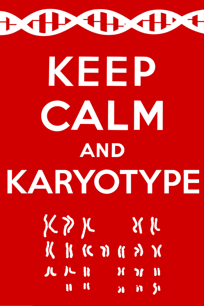 Keep Calm and Karyotype