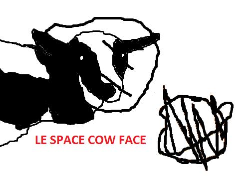 LE SPACE COW FACE