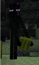 Enderman stole mah watermelon
