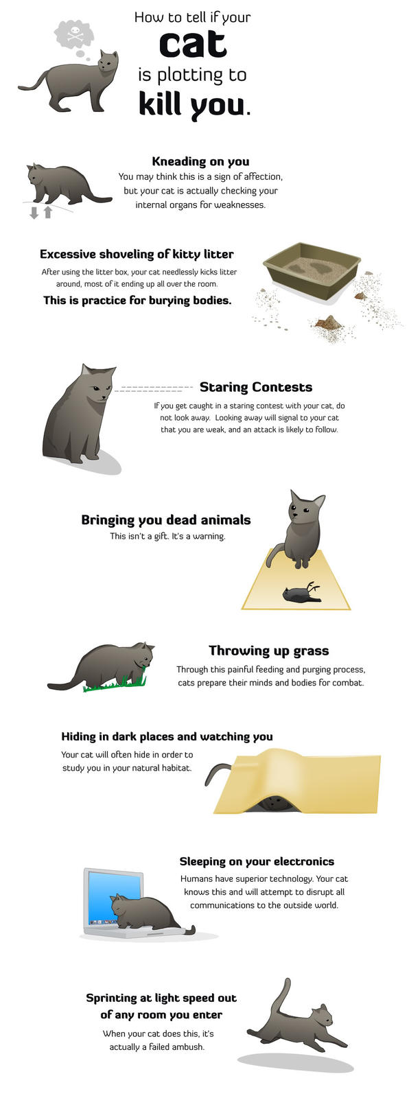 How to Tell if Your Cat Is Trying to Kill You.