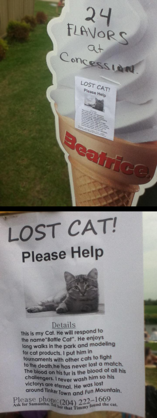 Battle Cat missing