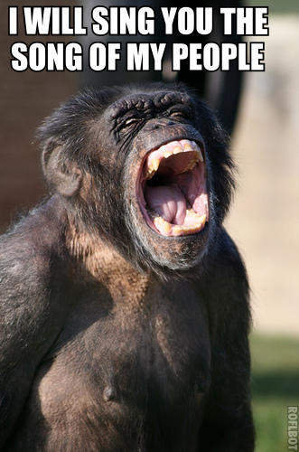 Singing Chimpanzee is Singing