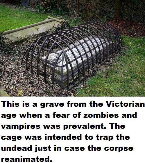 Anti Zombie Cage