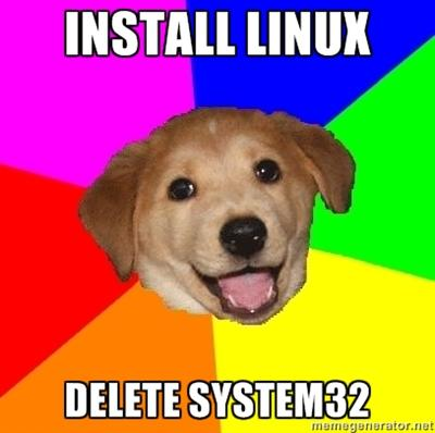 Advice Dog - install Linux, delete System32