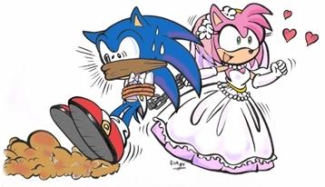 "The only way a Sonic X Amy ""shipping"" can end"