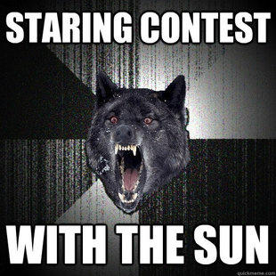 Staring contest... WITH THE SUN!