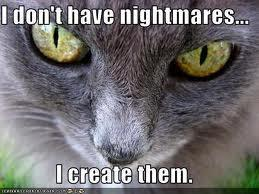 zalgo cat