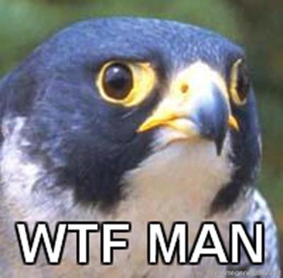WTF Falcon