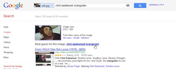 clint eastwood orangutan