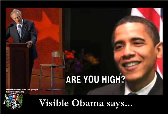 Visible Obama says...Are you high?