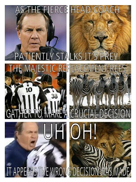 The Majesti Replacement Refs