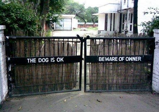 Do Not Beware of Dog