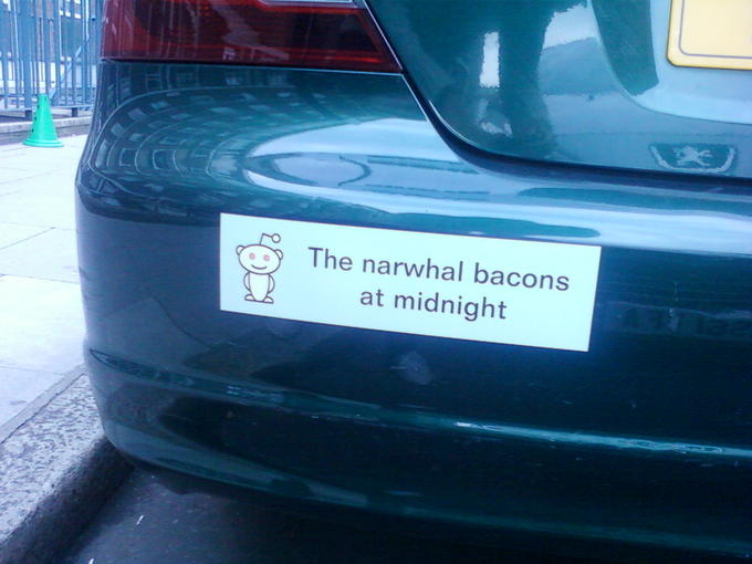 Car Bumper Sticker