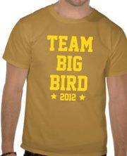 Team Big Bird