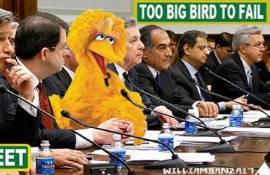 Too Big Bird to Fail Hearing