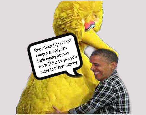 Big Bird Love