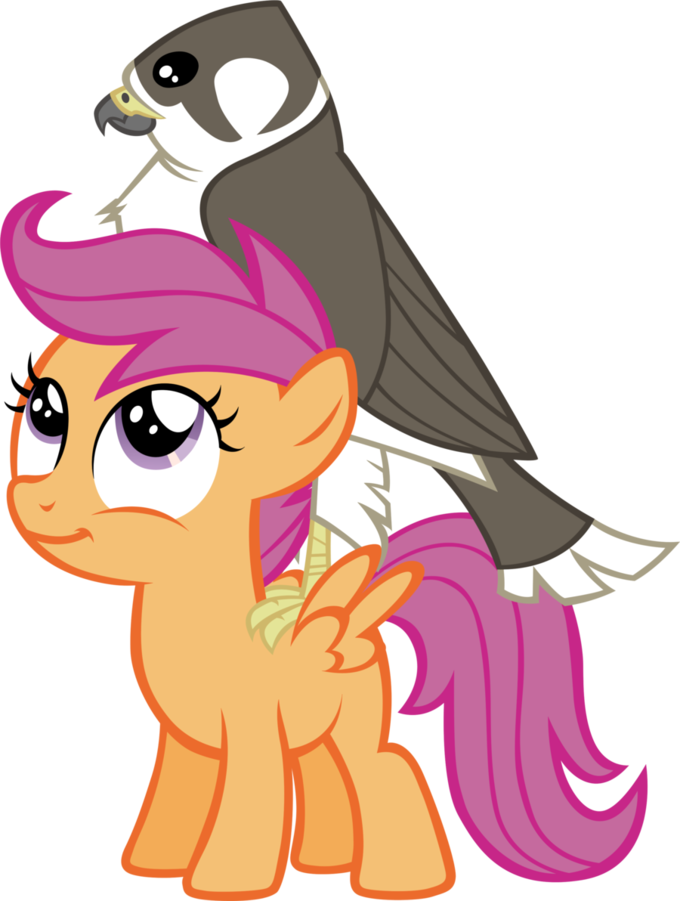 Scootaloo's Pet