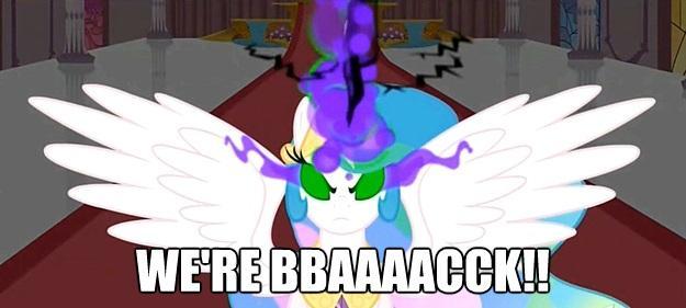 We're BBAAAACCK!!
