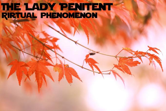 The Lady Penitent - Virtual phenomenon