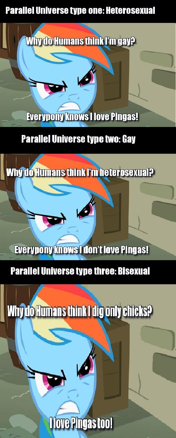 The End of The Debate of Whether Rainbow Dash likes Pingas Or Not