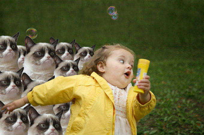 Grumpy Cat revenge