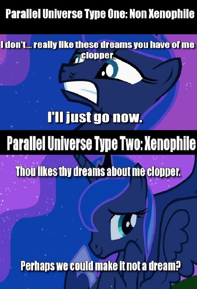 Princess Luna Visits A Clopper's Dream