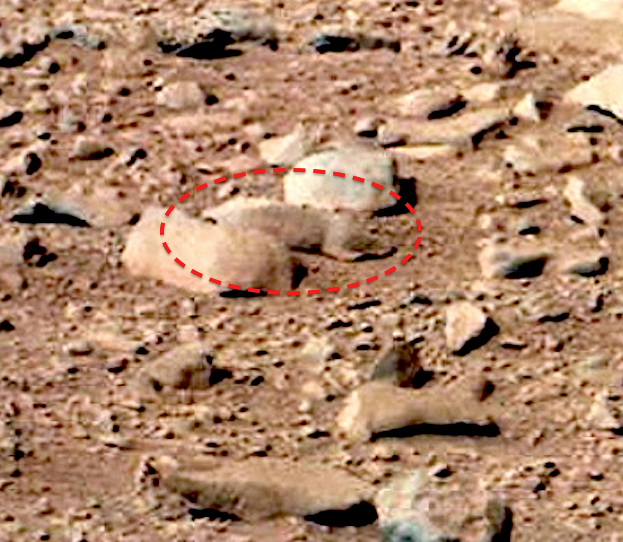 Curiosity possibly finds rodent on Mars?