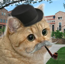 Gentleman Scholar Grafics Cat