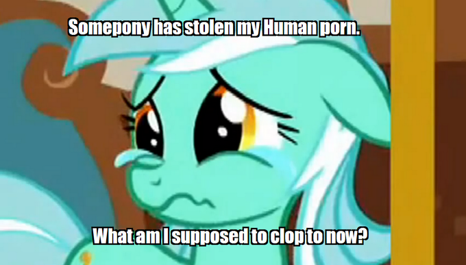 Somepony has stolen my Human porn. What am I supposed to clop to now?