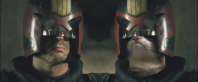 Grumpy cat is judge dredd!