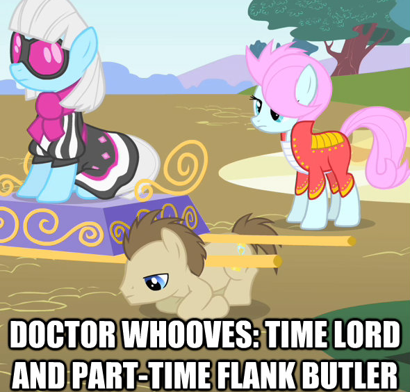 doctor whooves: time lord and part-time flank butler