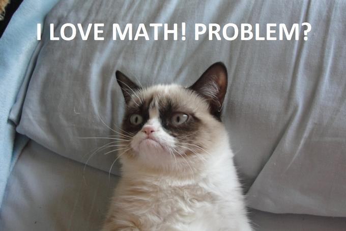 Grumpy cat math 3