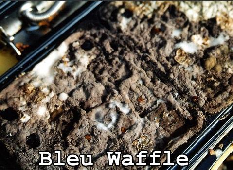 Bleu Waffle
