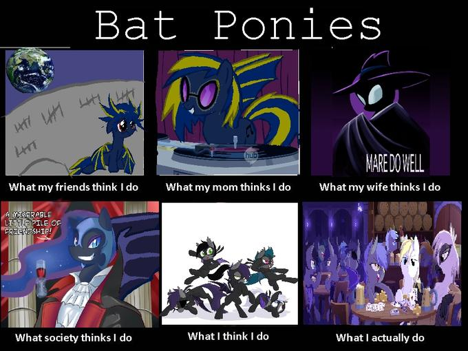 What Bat Ponies Do