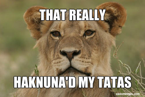 That really hakuna'd my tatas