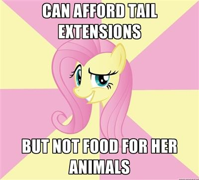 Fluttershy has feminine priorities.