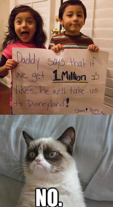 Grumpy cat 9f5