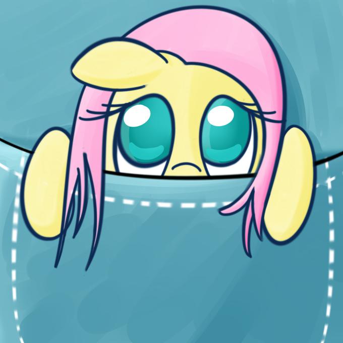 Pocket Pony