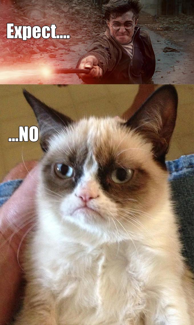 Grumpy Cat - Expect...No