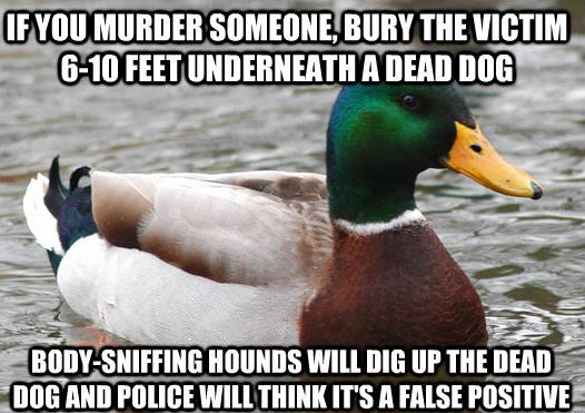 Actual Advice Duck