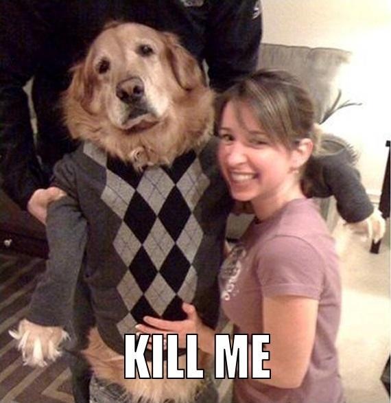 KILL ME Dog