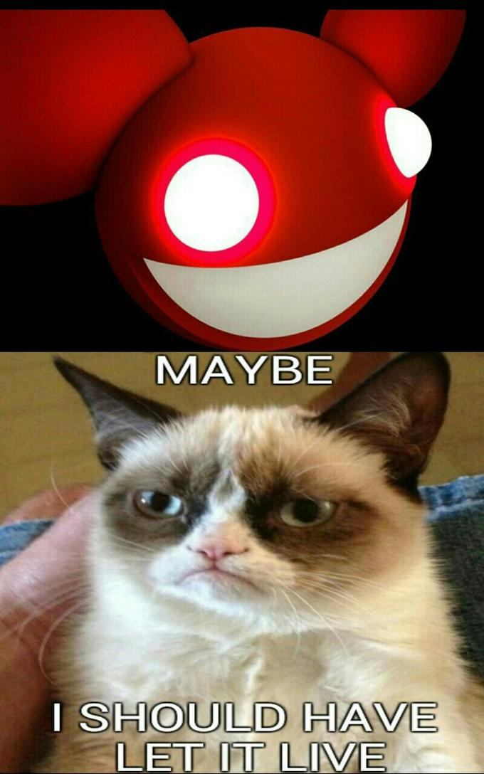 maybe grumpy cat should have let the mau5 live