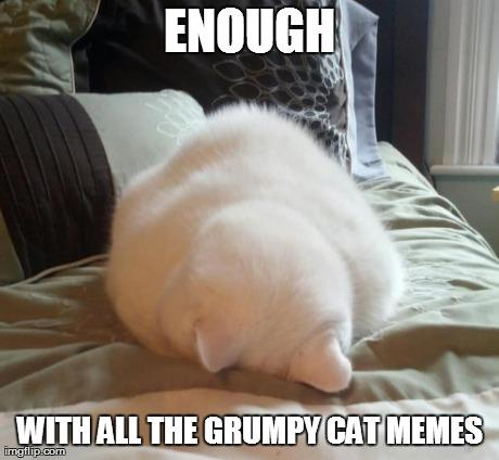 Enough Grumpy Cat memes