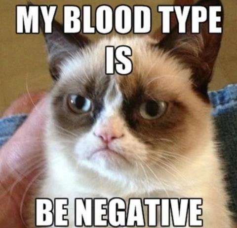 Grumpy Cat Blood Type