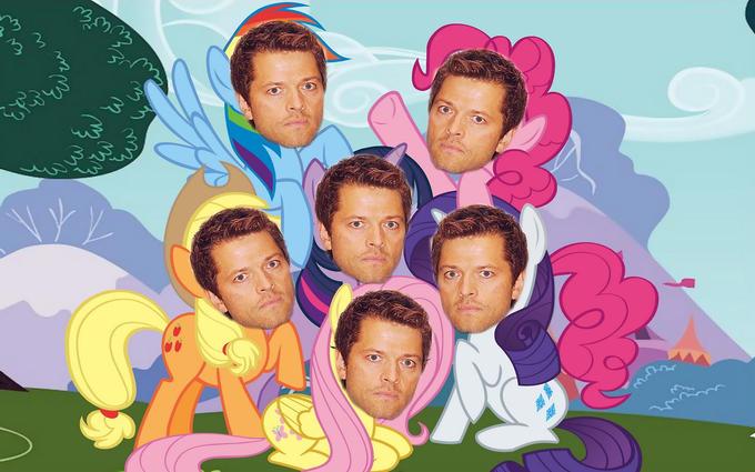 My Little Misha